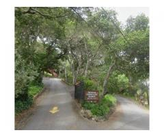 Saddle Mountain Ranch RV and Campground